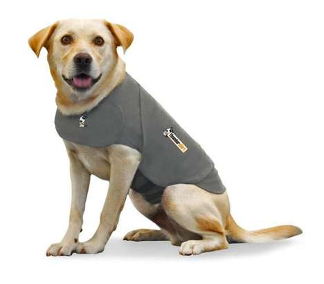 A picture of a dog in a jacket that's meant to, somehow, keep it calm.